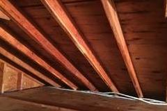 Mold Remediation in Attic in Newtown, CT