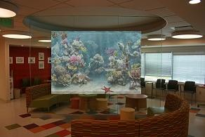 Danbury Childen's Hospital Interactive Wall - After Photo