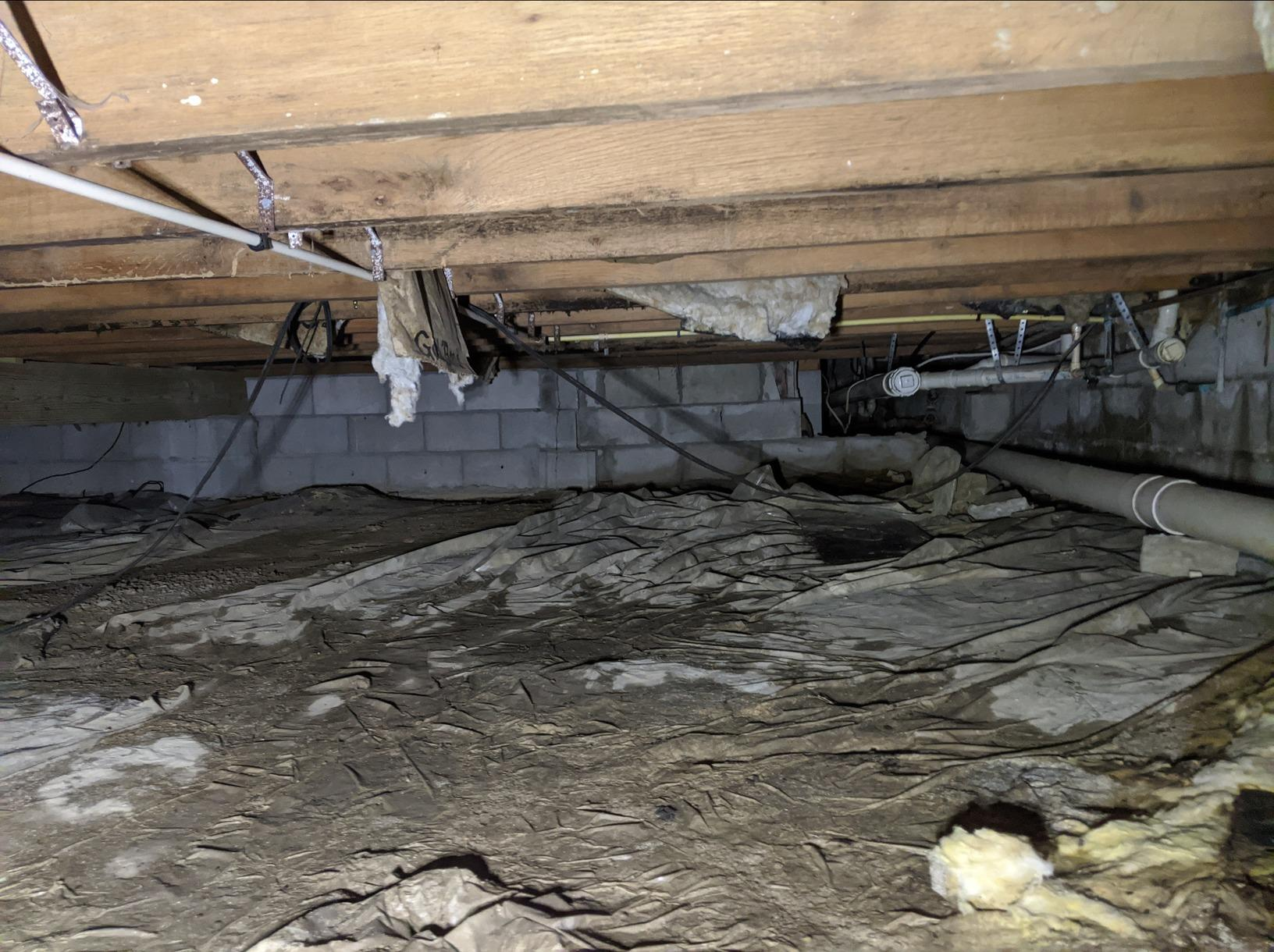 Reducing Mold, Humidity and Odors in a Crawlspace - Before Photo