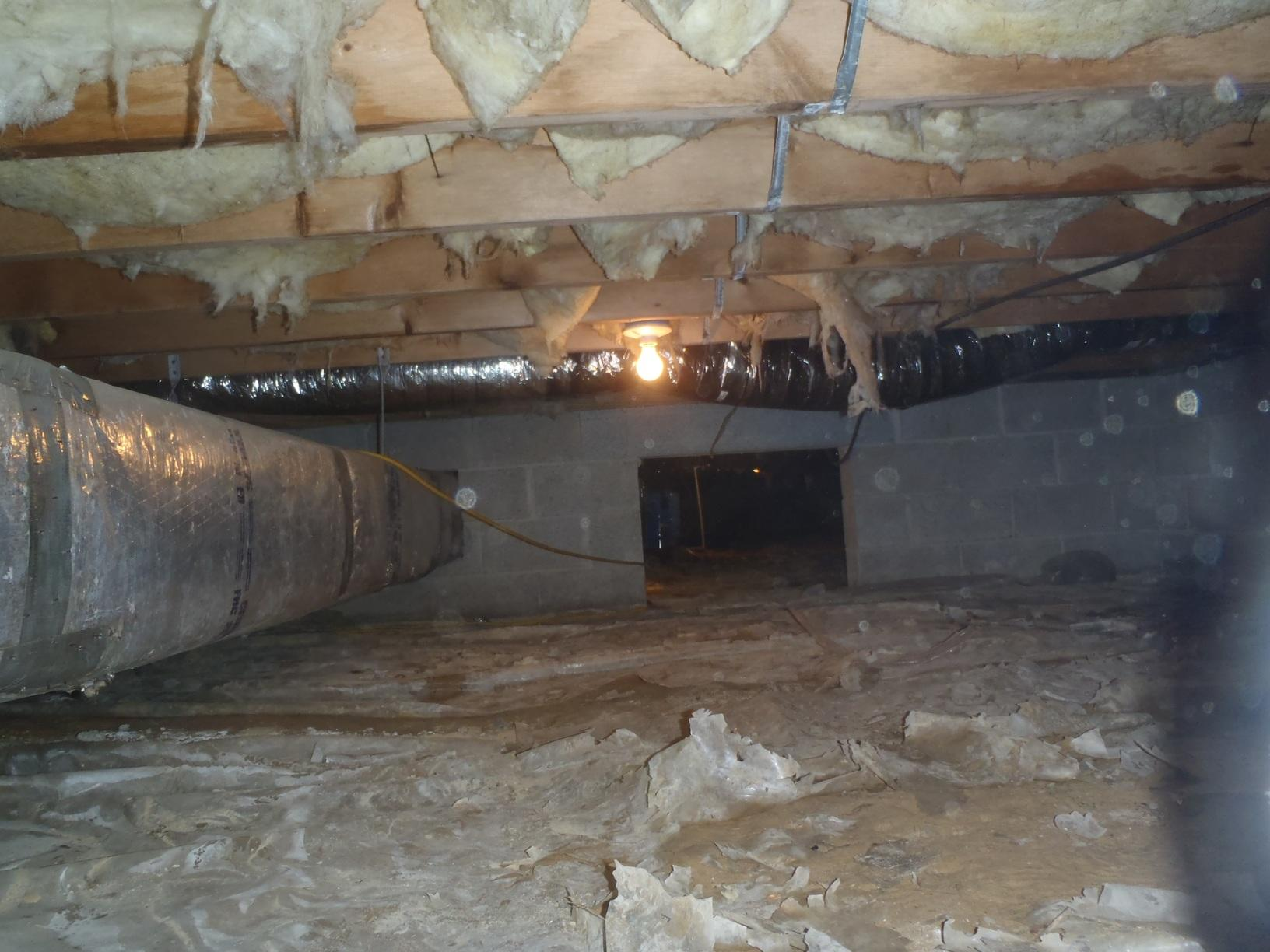 Crawl Space & Duct Cleaning in Centreville, MD. - Before Photo