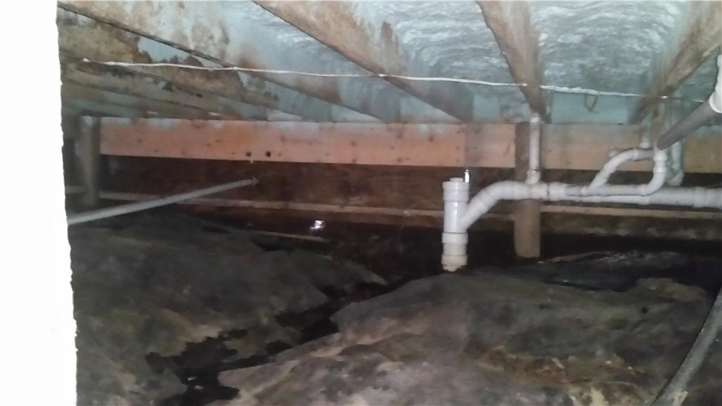 Nasty Crawl Space Transformed in Exeland, WI - Before Photo