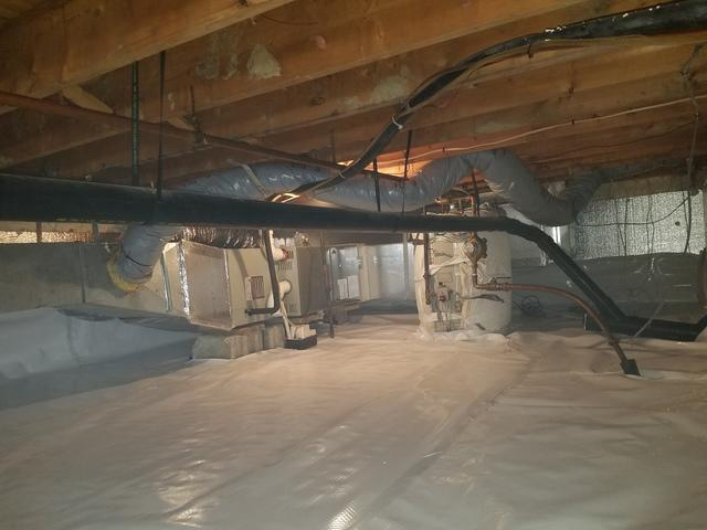Eliminating Mold in a Crawlspace in Pittsfield, MA