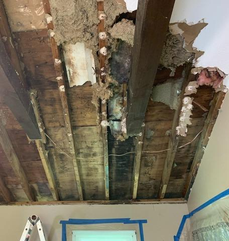 Remove and Replace Moldy Insulation in Woodstock, CT