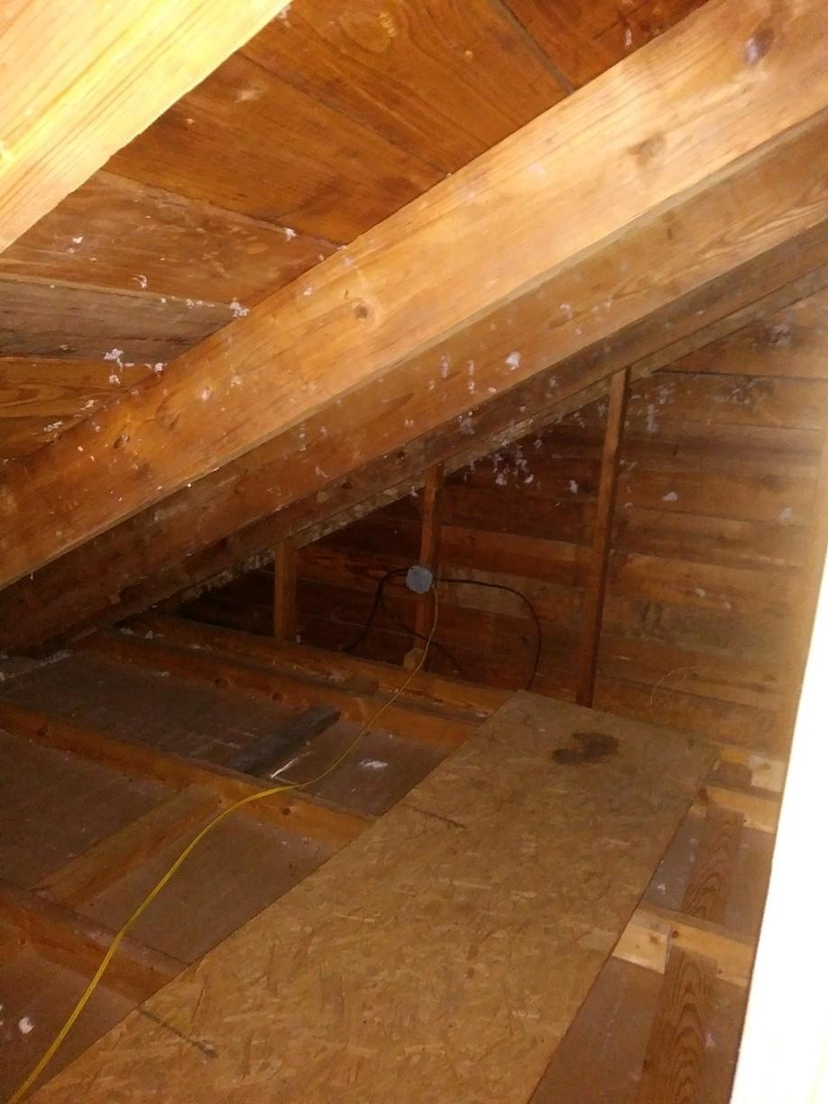 Mold remediation in Saint Jo - Before Photo