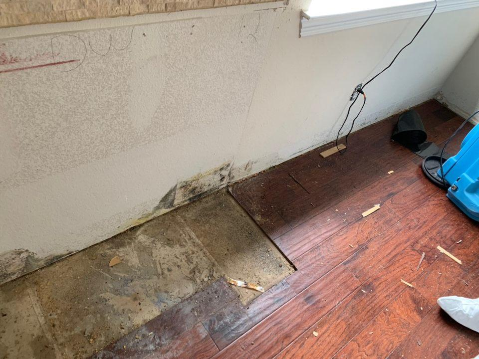 Mold Remediation in Mckinney, Tx. - Before Photo