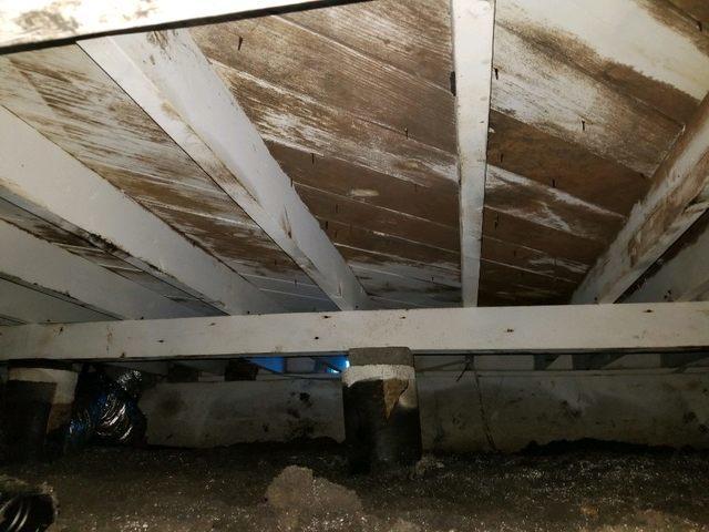 Crawl space remediation in Richardson