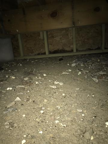 Crawl space remediation in Dallas