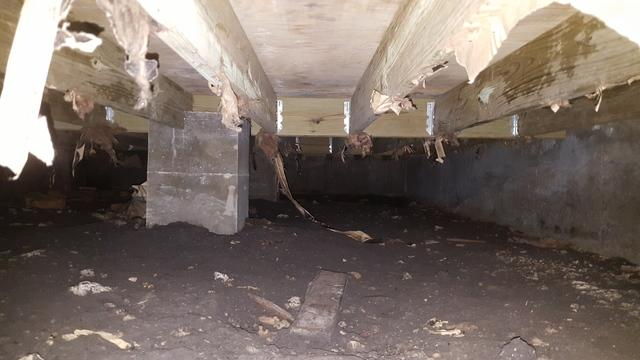 Crawl Space Remediation in Dallas, Tx