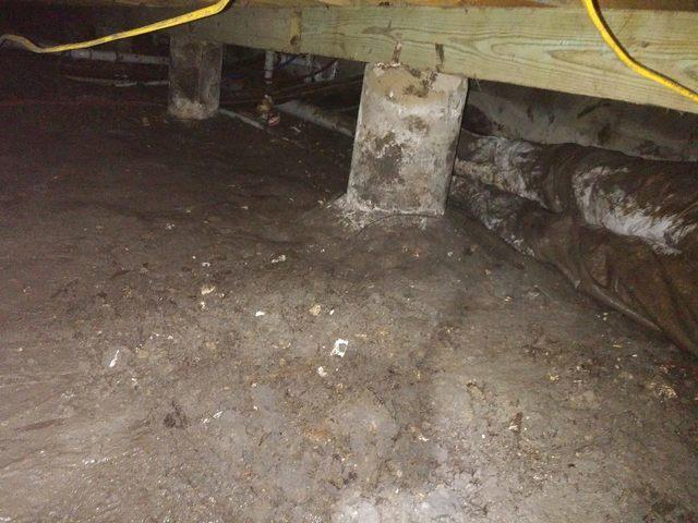 Crawl Space in Dallas, Tx