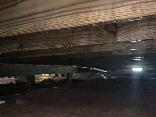 Crawlspace Encapsulation in Gainesville, TX
