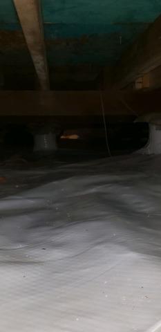 Crawl Space Encapsulation in Hurst, TX