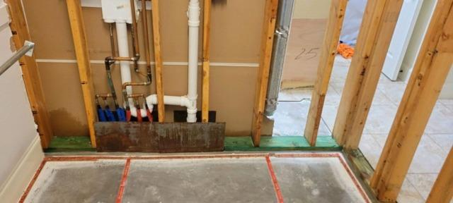 Mold Remediation in Prosper, TX