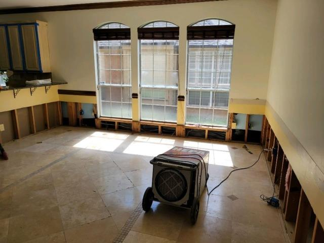 Mold Remediation in Plano, TX