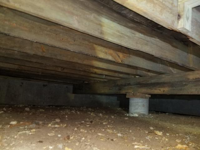 Crawl Space Remediation in Sherman, TX - Before Photo