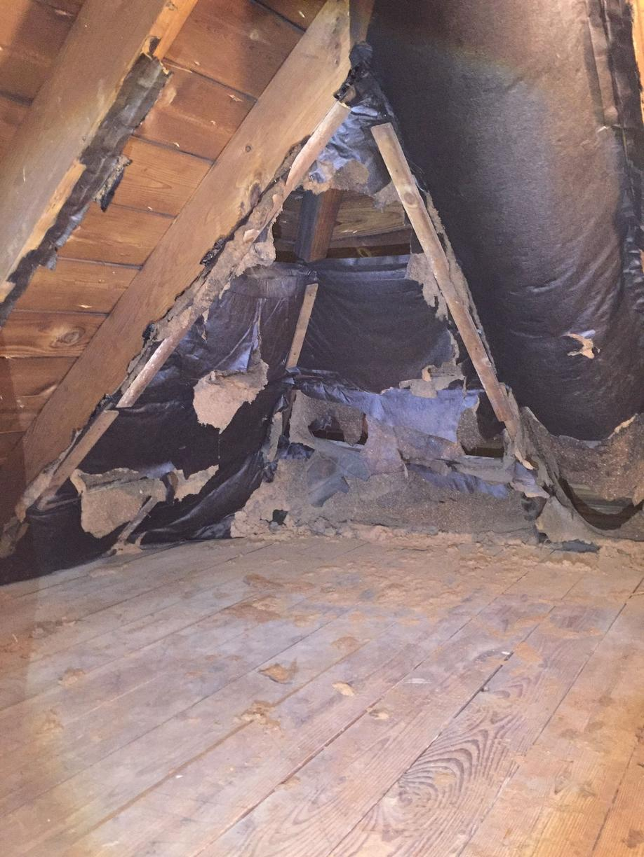 Waconda, IL Attic in Need of Insulation - Before Photo
