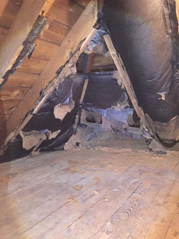 Waconda, IL Attic in Need of Insulation