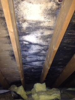 Attic Insulation in Wilmette, IL