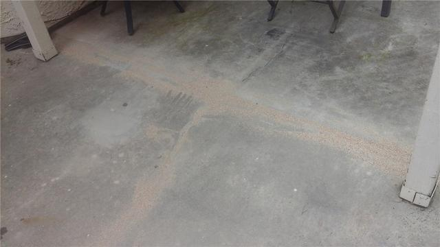 A Cracked Patio