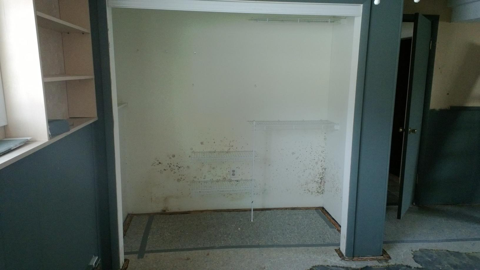 Mold Remediation in Livingston, MT - Before Photo