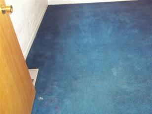 Carpet Cleaning in Butte, MT