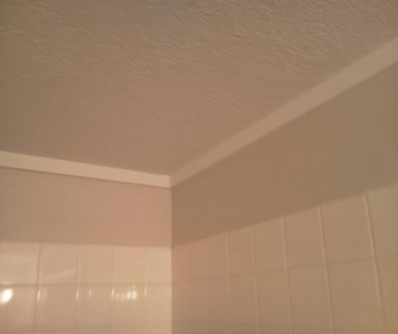 Mold Remediation Bozeman, MT - After Photo