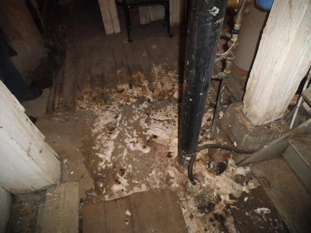 Sewer Damage Butte, MT