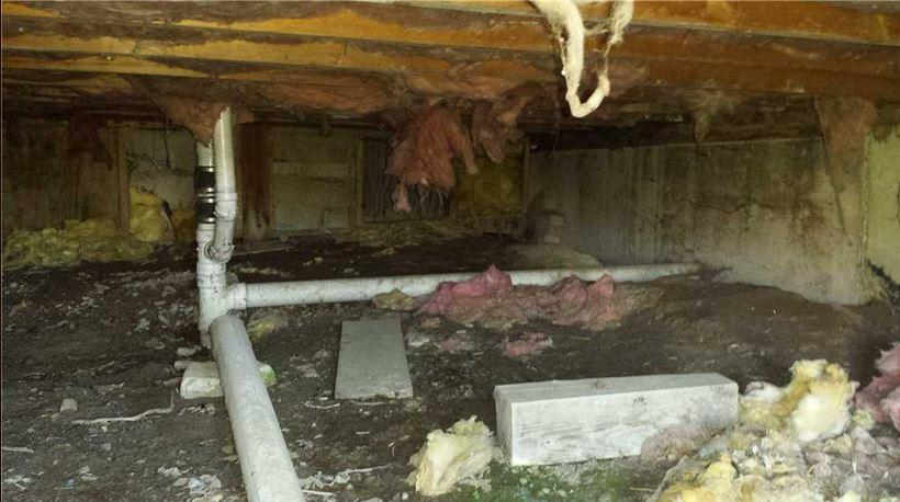 Crawl Space Insulation in King Ferry, NY - Before Photo
