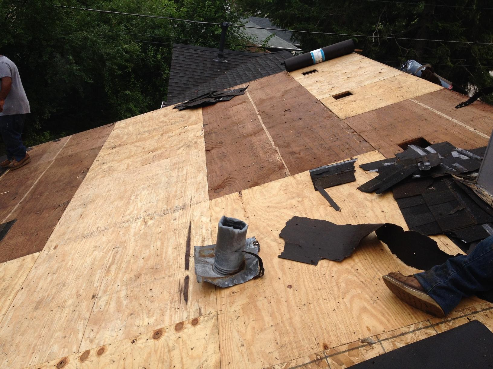 Fallen Tree & Wind Damage in Rolling Meadows IL - After Photo