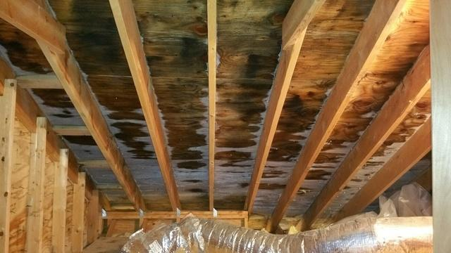 Mold Remediation in Arlington Heights, IL - Before Photo