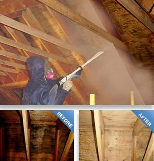 Mold Remediation & Debris Removal in Arlington Heights, IL