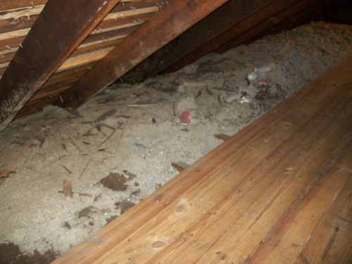 Attic Cleaning in Stamford, CT - Before Photo