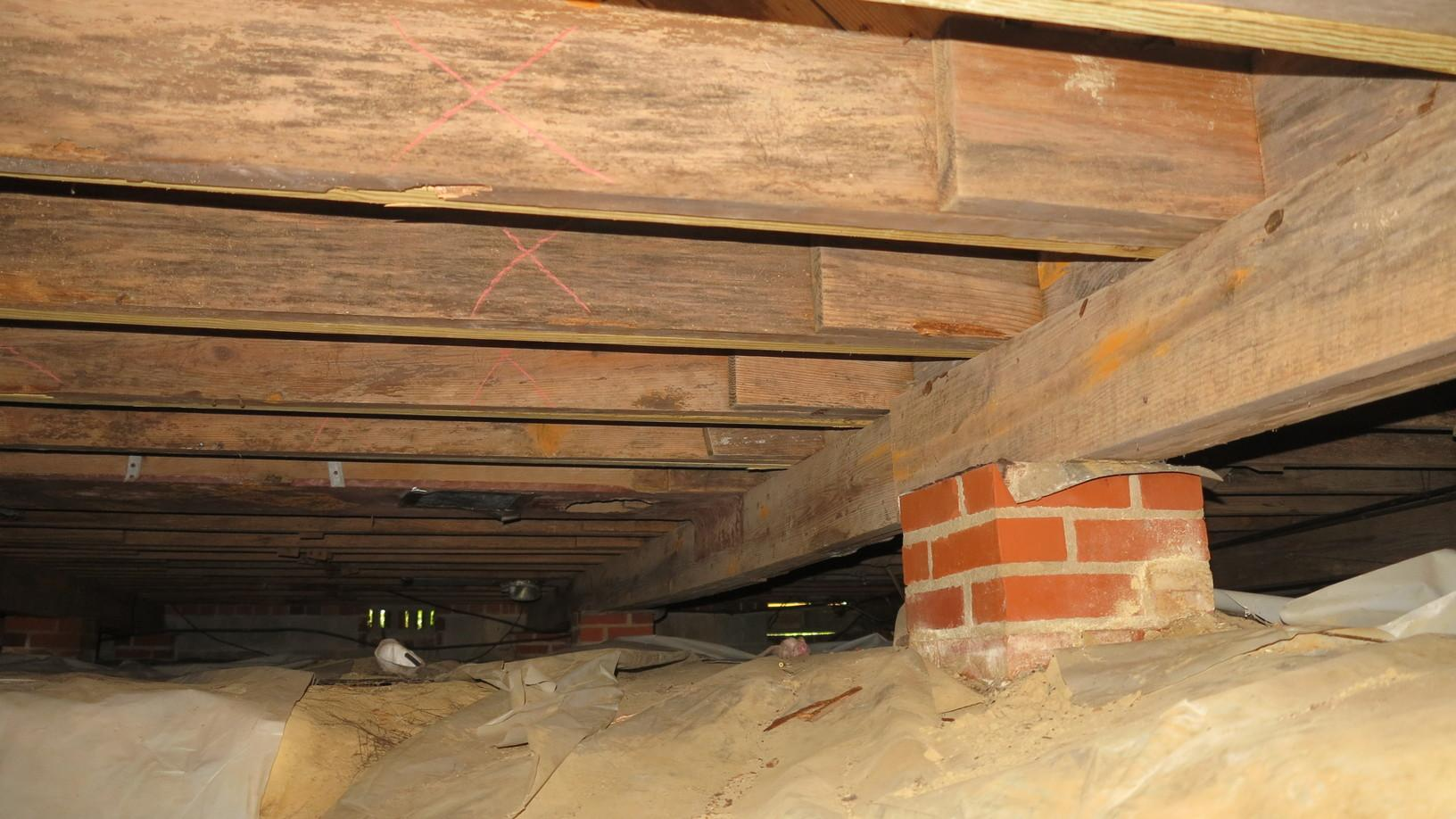 Finding a Solution for Dry Rot in Camden, SC - Before Photo