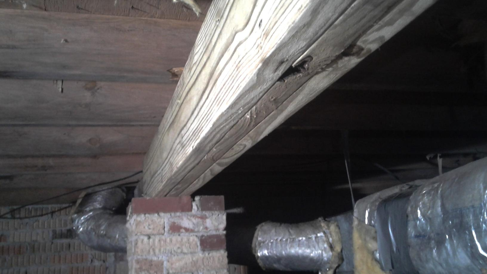 Wood Rot Causing Problems for Allergic Homeowner in Lugoff, SC - After Photo
