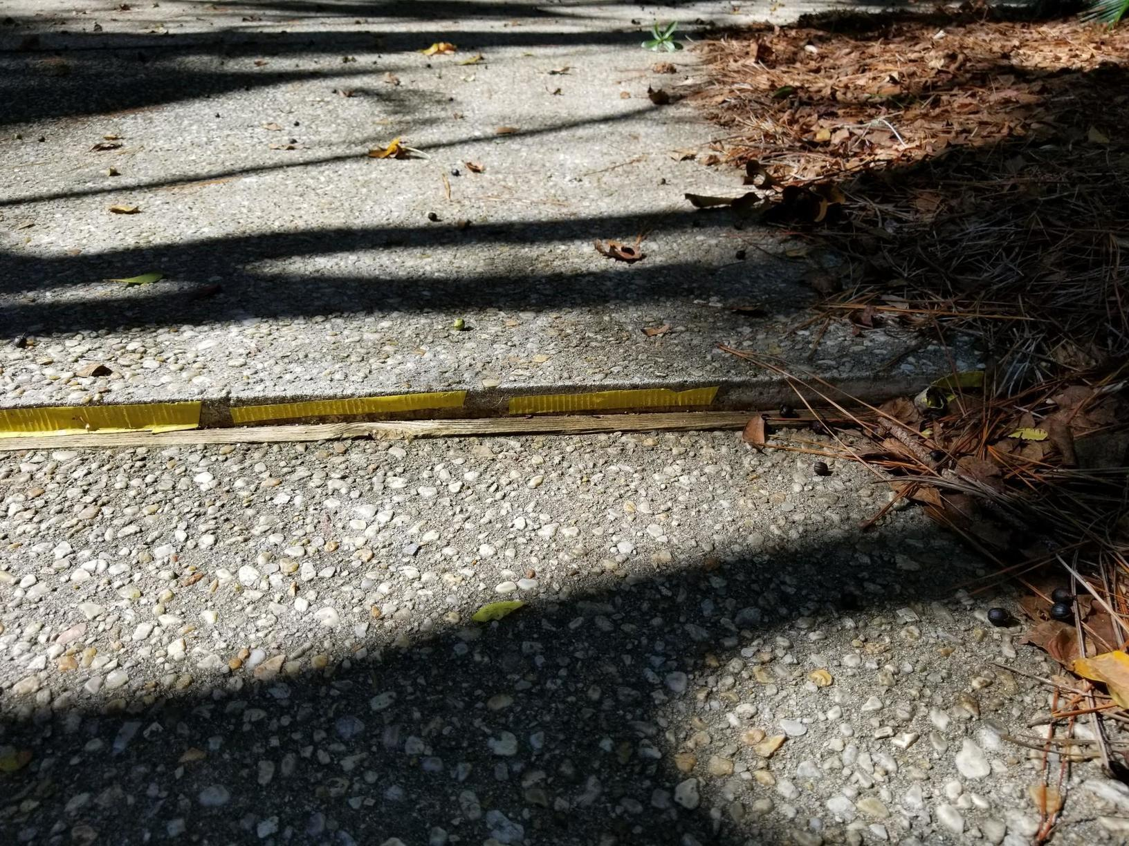 PolyLevel Gives Peace of Mind to Outdoorsman in Johns Island, SC - Before Photo