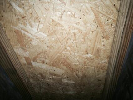 Rotten Sub-Floor Replaced in Sumter, SC