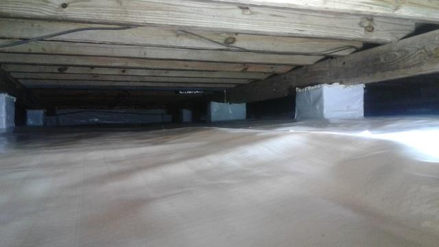 Finding a Solution for Dry Rot in Camden, SC