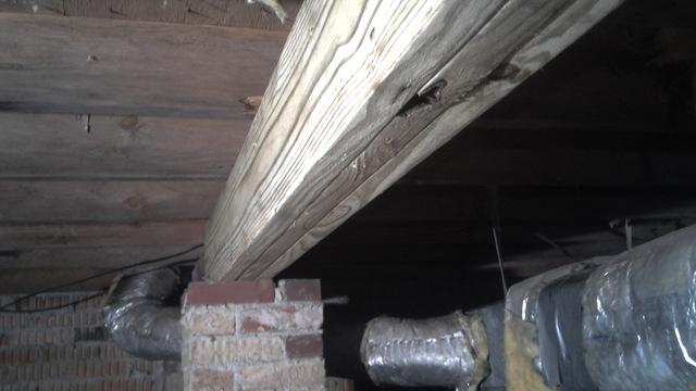 Wood Rot Causing Problems for Allergic Homeowner in Lugoff, SC