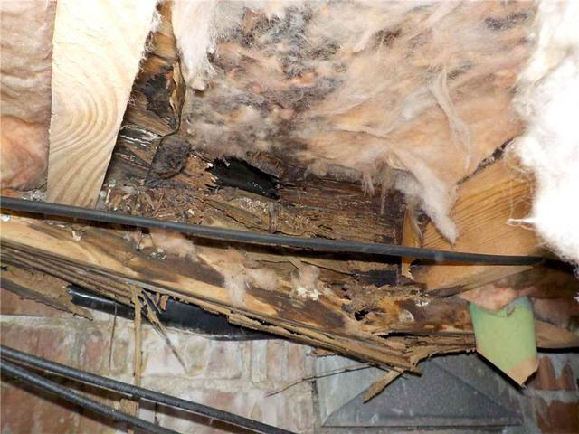 Wood Replacement Teaches West Columbia, SC Homeowner About Crawl Space Conditions - Before Photo