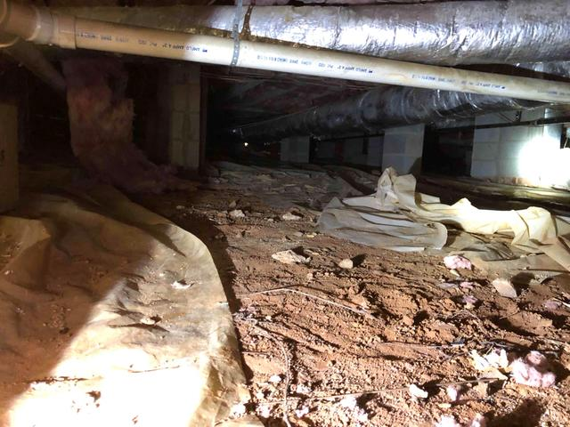 Wet and Moldy Crawlspace Repair - Before Photo