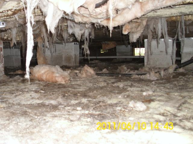 Crawl Space Encapsulated in Georgetown, SC