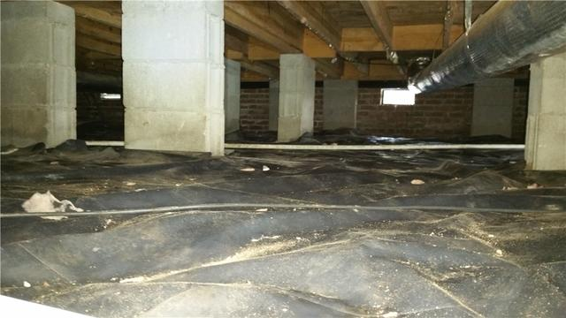 Mold Treatment and Encapsulation of a Crawl Space in Lane, SC