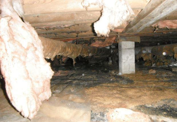 Removed Moisture and Repaired the Foundation for a Ladson Home's Crawl Space