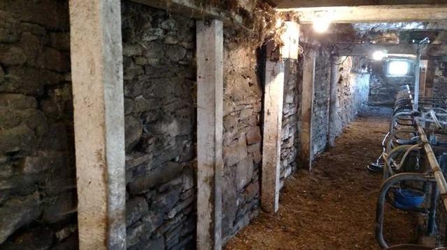 Wall Stabilization Cincinnatus, NY