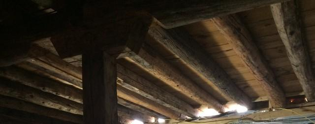 Eliminate Attic Mold in Sister Bay