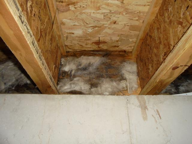 Air Sealing Around Rim Joists in Neenah, WI
