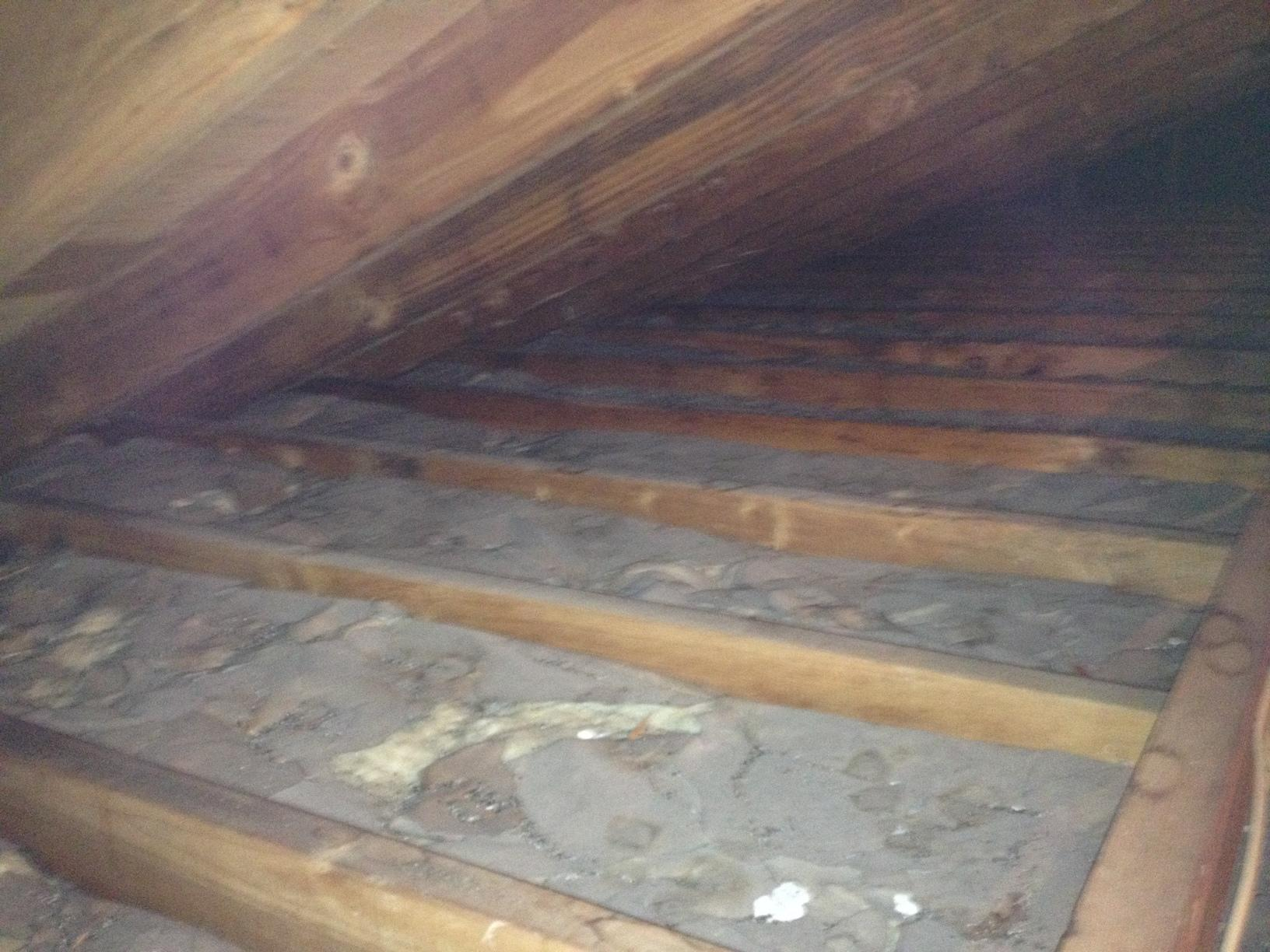 Attic insulation in Neptune, NJ - Before Photo