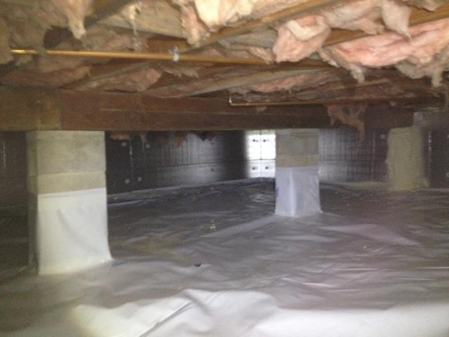 Cold Floors, High Humidity, & Cave Cricket Infestation in Island Heights, NJ - After Photo