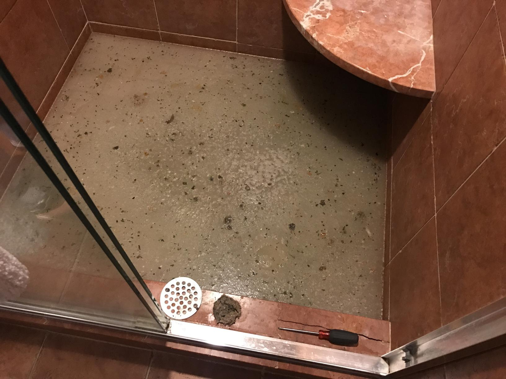 Clogged Shower - Before Photo