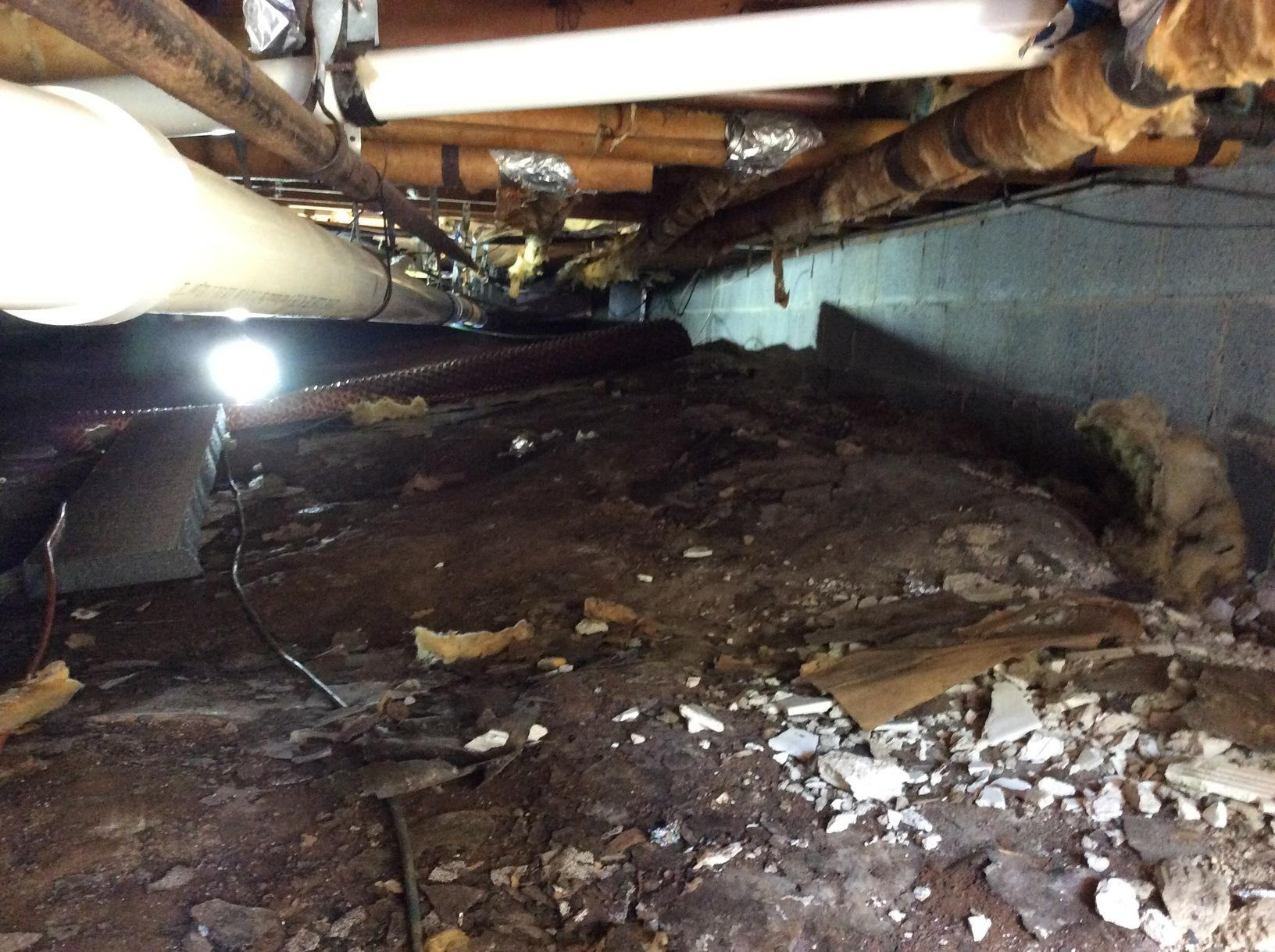 New Insulation for Crawlspace in Martinsville, NJ - Before Photo