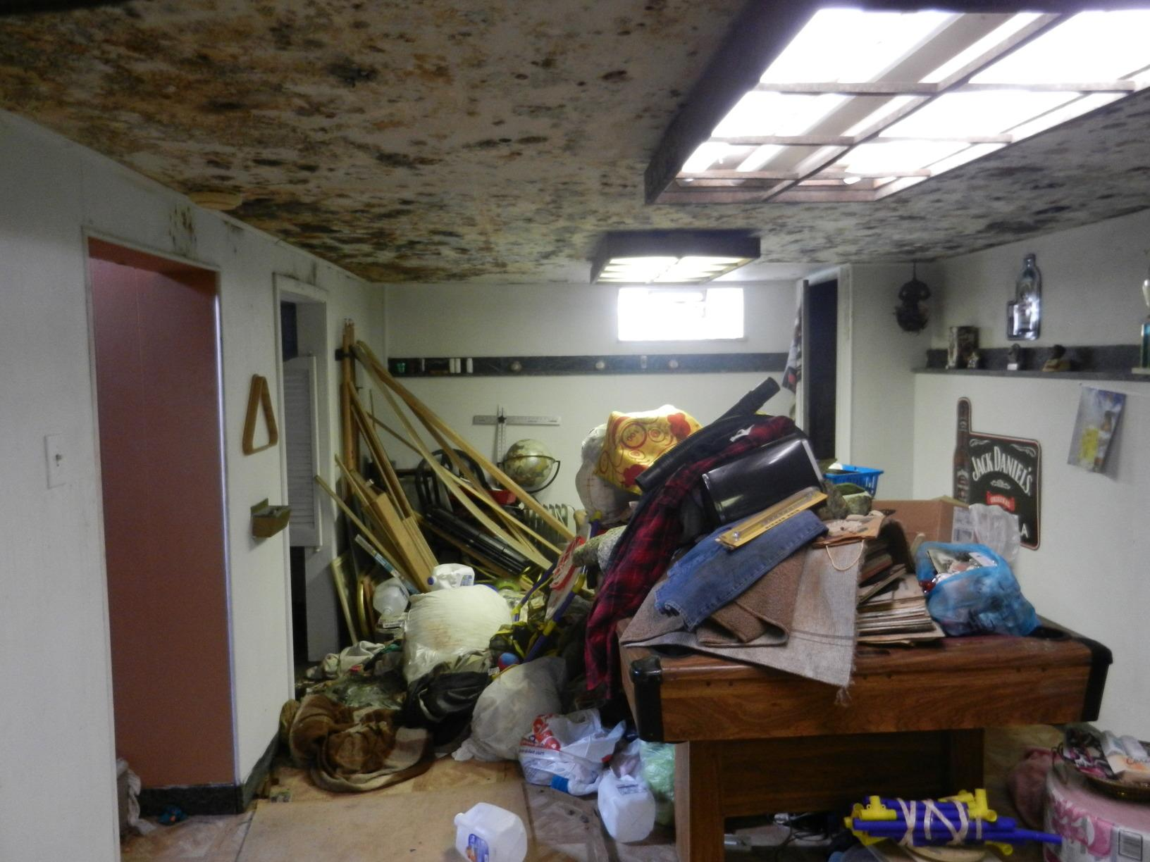 Basement Mold Remediation Job in Cleveland - Before Photo